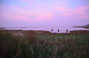 The Bodden by Barth